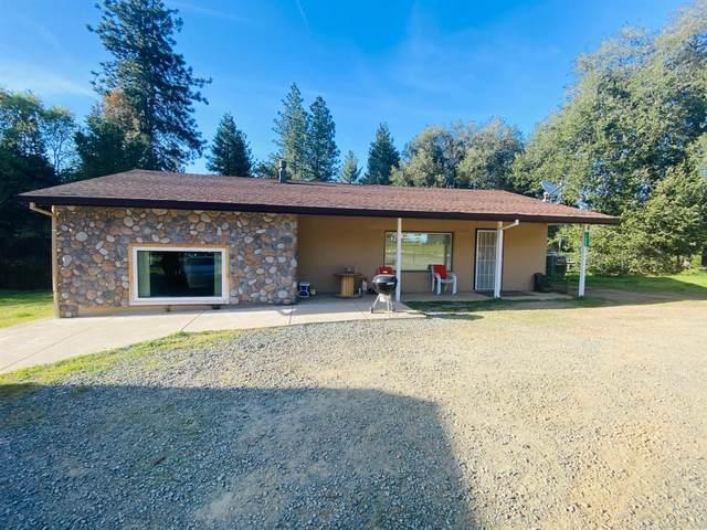 15833 Pioneer Creek Road, Pioneer, CA 95666 (MLS #221034268) :: Keller Williams - The Rachel Adams Lee Group