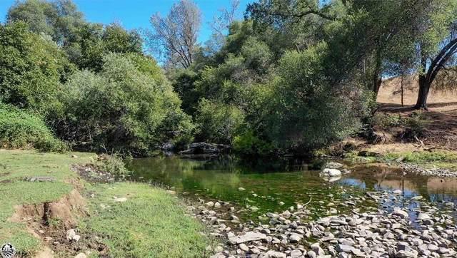 11391 Algerine Road, Jamestown, CA 95327 (MLS #221034404) :: Keller Williams - The Rachel Adams Lee Group