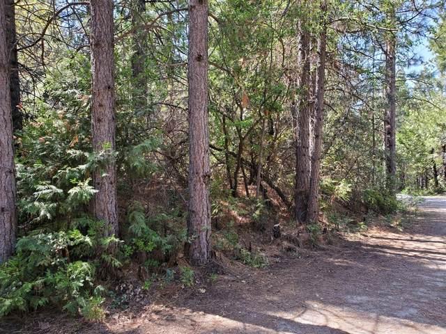 0 Oak Hills Lane, Volcano, CA 95689 (MLS #221034634) :: Live Play Real Estate | Sacramento