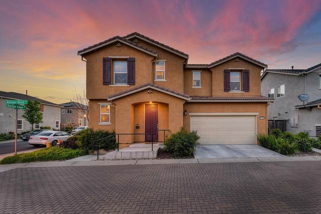3 Anchor Bend Place, Sacramento, CA 95835 (MLS #221034773) :: Heidi Phong Real Estate Team