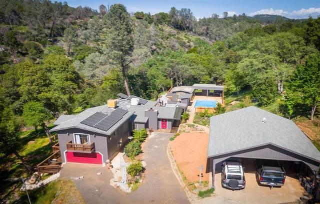 13290 Terrace Drive, Sonora, CA 95370 (MLS #221034866) :: eXp Realty of California Inc