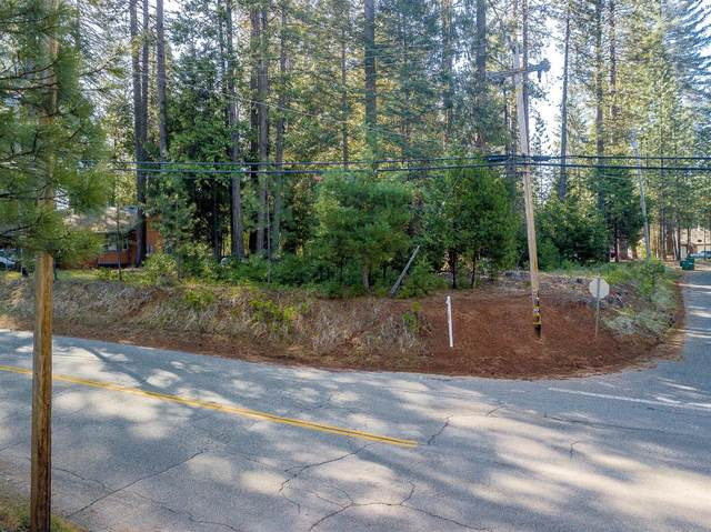 0 Grizzly Flat Rd Lot 119, Grizzly Flats, CA 95636 (#221034870) :: Jimmy Castro Real Estate Group