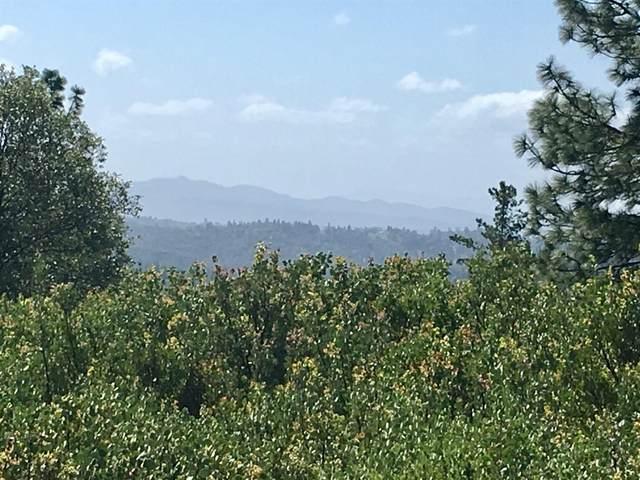 0 Rose Quartz Ct., Pine Grove, CA 95665 (MLS #221035083) :: Deb Brittan Team