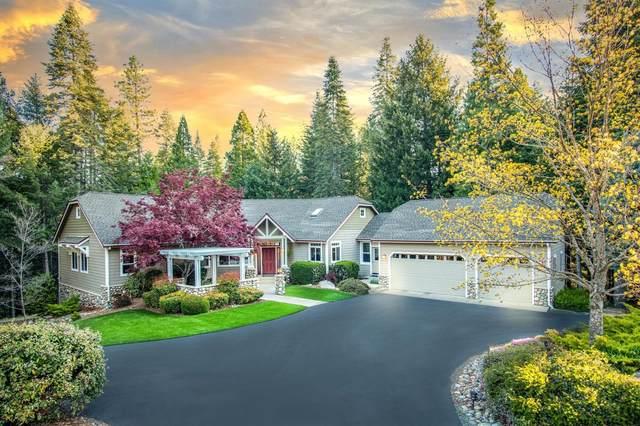 10711 Murchie Mine Road, Nevada City, CA 95959 (MLS #221036661) :: Heidi Phong Real Estate Team