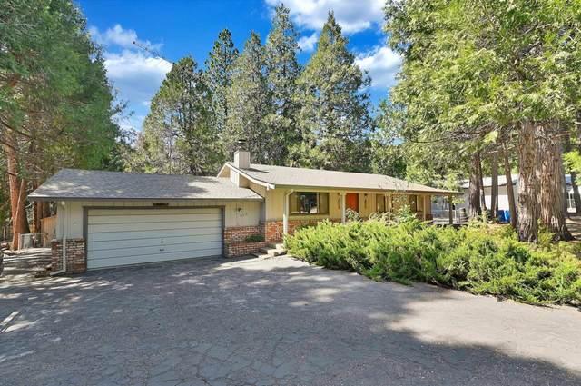 16618 Meadow Vista Drive, Pioneer, CA 95666 (MLS #221037045) :: Keller Williams - The Rachel Adams Lee Group