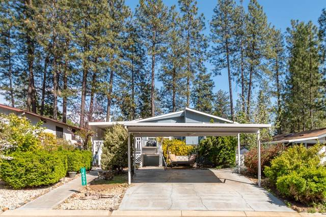 14977 N Country Road, Grass Valley, CA 95946 (MLS #221037178) :: eXp Realty of California Inc