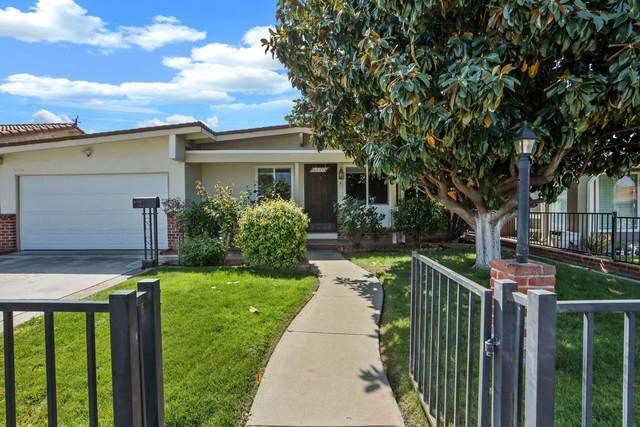 3350 Pepper Tree Lane, San Jose, CA 95127 (MLS #221037201) :: Keller Williams - The Rachel Adams Lee Group