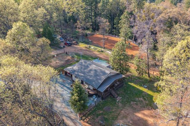 670 Timber Lane, West Point, CA 95255 (MLS #221037206) :: Heidi Phong Real Estate Team