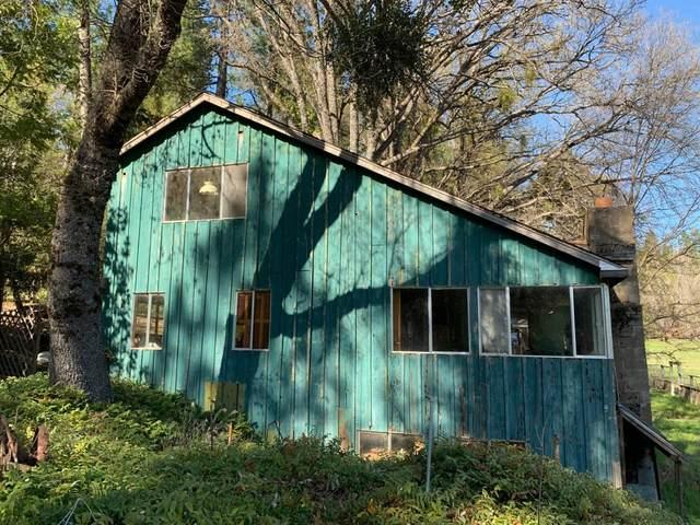 1944 Meadow View, West Point, CA 95255 (MLS #221037230) :: Heidi Phong Real Estate Team
