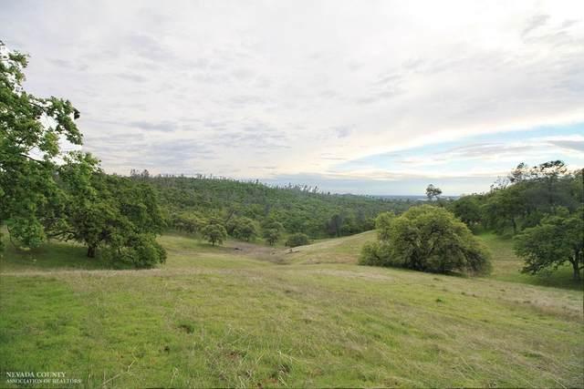 8584 Riverview Terrace, Smartsville, CA 95977 (MLS #221037320) :: Heidi Phong Real Estate Team