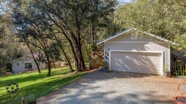 21431 Aqueduct Circle, Pine Grove, CA 95665 (MLS #221037390) :: Keller Williams - The Rachel Adams Lee Group