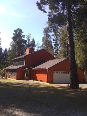 1900 Flatlander Lane, Pollock Pines, CA 95726 (MLS #221037905) :: The Merlino Home Team