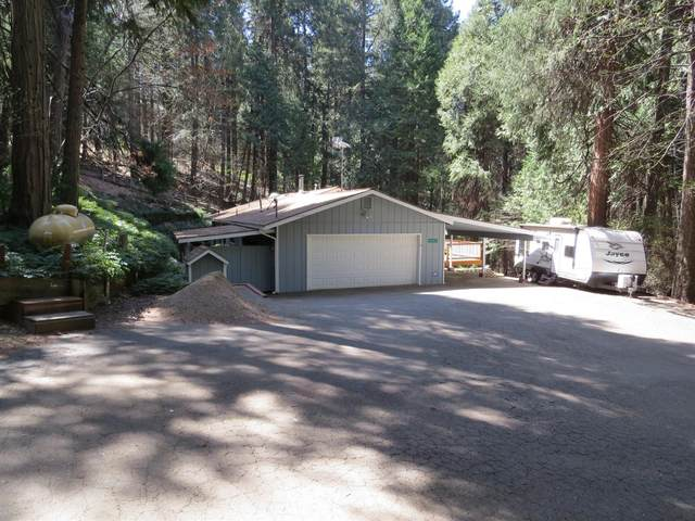 6488 Misery Lane, Pollock Pines, CA 95726 (MLS #221037917) :: The Merlino Home Team
