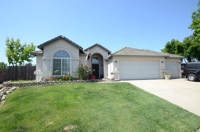 766 Oldenburg, Galt, CA 95632 (MLS #221039474) :: Heidi Phong Real Estate Team