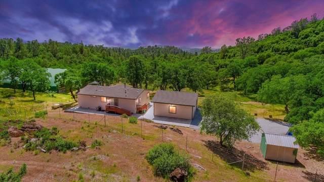 4355 Penobscot Road, Greenwood, CA 95635 (MLS #221039648) :: eXp Realty of California Inc