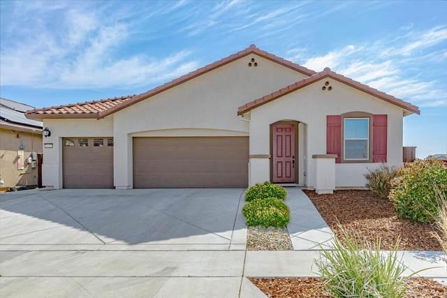 1645 Winne Drive, Woodland, CA 95776 (MLS #221040108) :: eXp Realty of California Inc