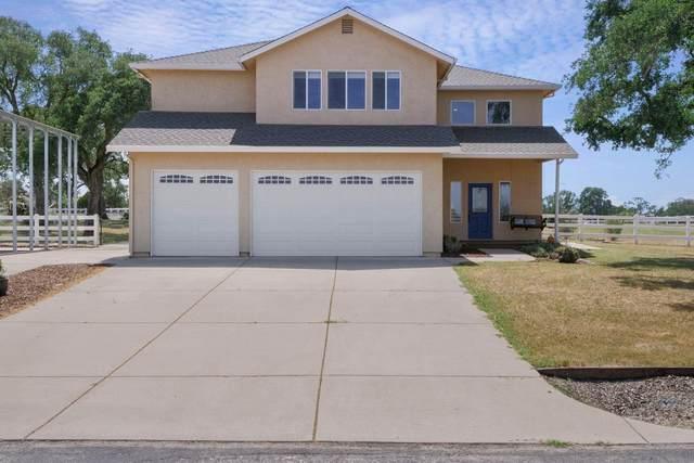 1590 Goose Creek Road, Ione, CA 95640 (MLS #221041089) :: Live Play Real Estate | Sacramento