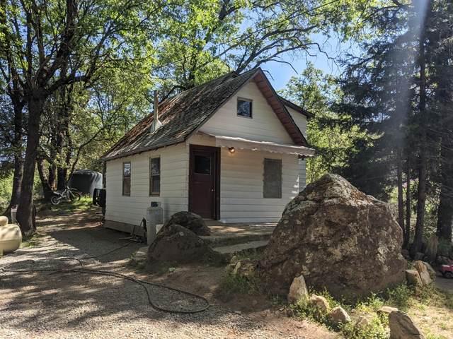 19595 Oak Tree Road, Nevada City, CA 95959 (MLS #221041257) :: Heidi Phong Real Estate Team