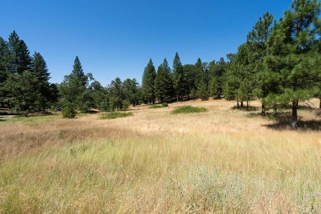 25755 State Highway 88, Pioneer, CA 95666 (MLS #221041891) :: Live Play Real Estate | Sacramento