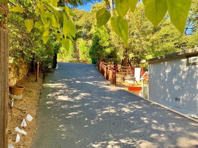 21933 Phoenix Lake Road, Sonora, CA 95370 (MLS #221042119) :: CARLILE Realty & Lending