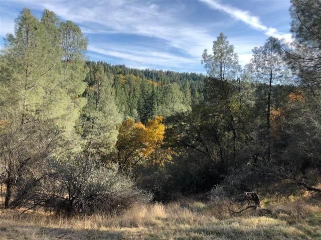 5371 Five Spot Road, Pollock Pines, CA 95726 (MLS #221042324) :: Heidi Phong Real Estate Team