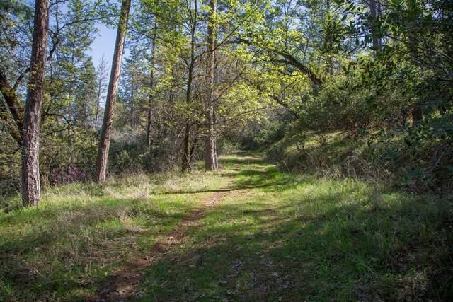 24316 Timber Ridge Drive, Grass Valley, CA 95602 (MLS #221042385) :: Deb Brittan Team