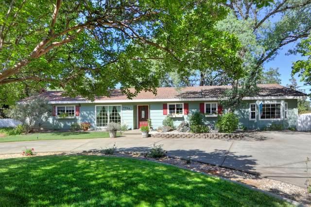 4396 Holly Dr, Shingle Springs, CA 95682 (MLS #221043804) :: CARLILE Realty & Lending
