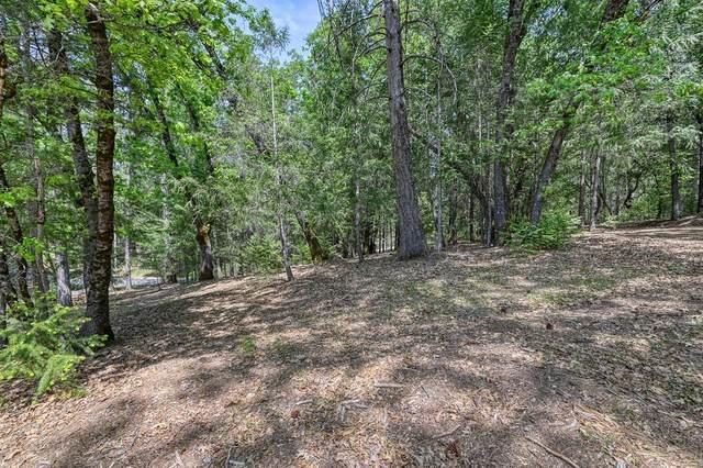 1 Forest Lake Place, Weimar, CA 95736 (MLS #221044729) :: Keller Williams - The Rachel Adams Lee Group