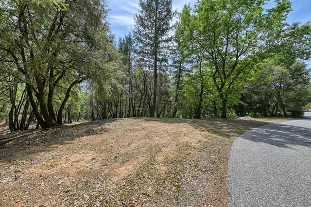 2 Forest Lake Place, Weimar, CA 95736 (MLS #221044767) :: Keller Williams - The Rachel Adams Lee Group