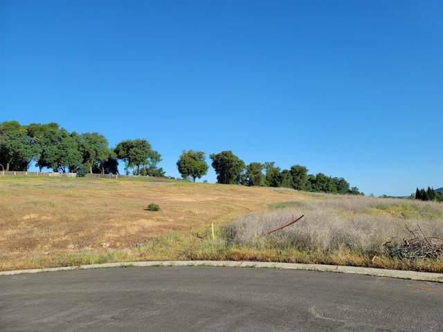 0 Shetland Court, El Dorado Hills, CA 95762 (MLS #221045013) :: Heidi Phong Real Estate Team