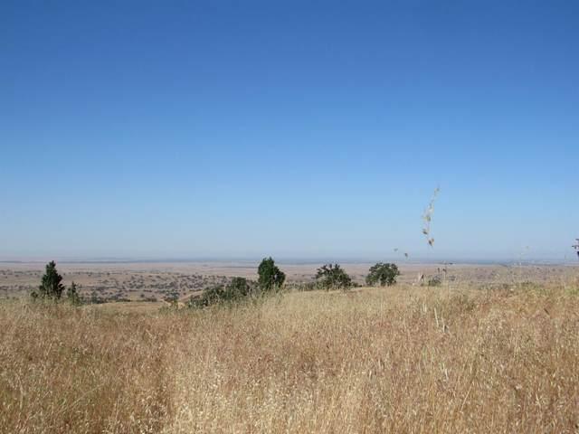 9731 Banderilla, La Grange, CA 95329 (MLS #221045379) :: CARLILE Realty & Lending