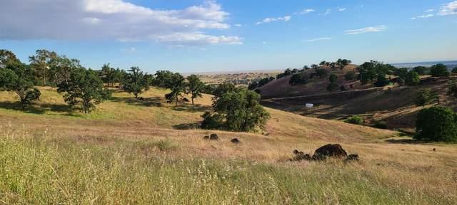 9749 Hernandez Drive, La Grange, CA 95329 (MLS #221045429) :: CARLILE Realty & Lending
