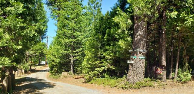 0 Fairglade Road, Placerville, CA 95667 (MLS #221045569) :: 3 Step Realty Group