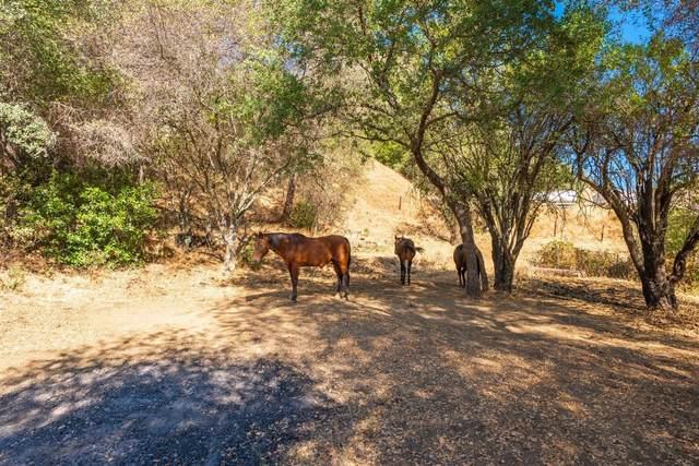 0 Mill Street, Sutter Creek, CA 95685 (MLS #221045638) :: Heidi Phong Real Estate Team