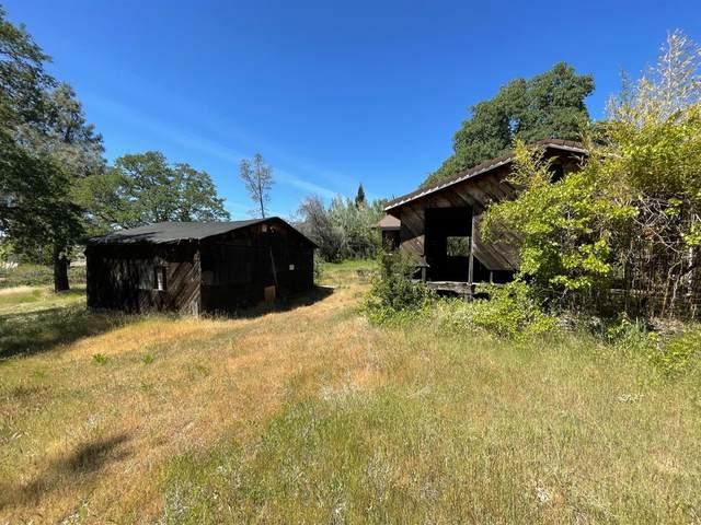 12265 New Airport Road, Auburn, CA 95603 (MLS #221045642) :: Live Play Real Estate | Sacramento