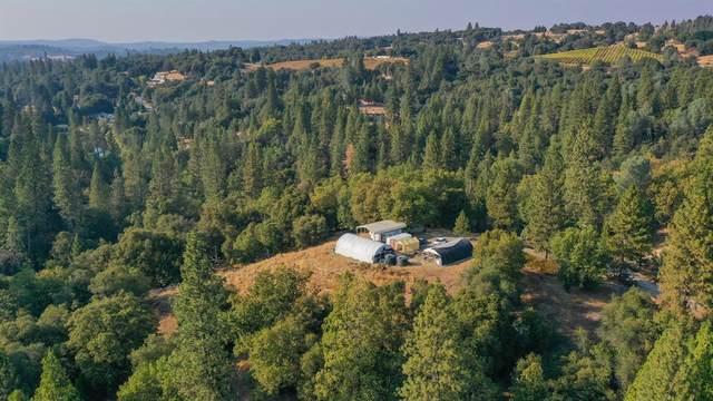 8005 Boondock Trail, Somerset, CA 95684 (MLS #221045696) :: Keller Williams - The Rachel Adams Lee Group