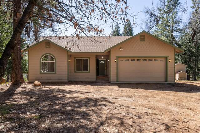 5820 Lynx Trail, Pollock Pines, CA 95726 (MLS #221045919) :: 3 Step Realty Group