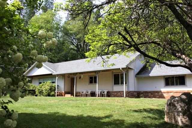 1151 Peaceful Valley Road, Colfax, CA 95713 (MLS #221046480) :: Keller Williams - The Rachel Adams Lee Group