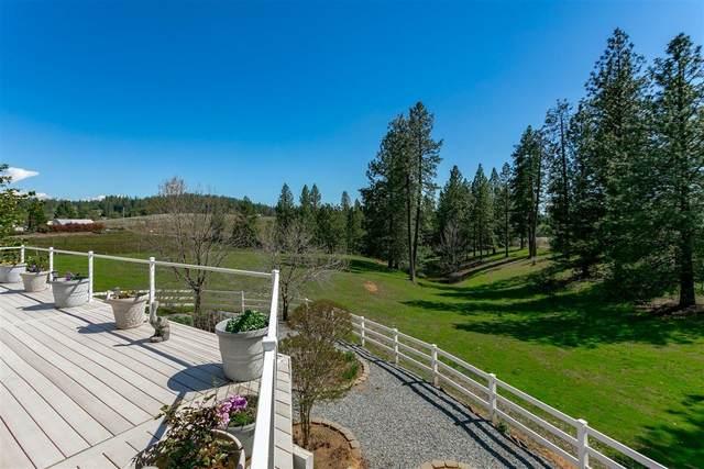 2452 Apple Vista Lane, Camino, CA 95709 (MLS #221046573) :: Keller Williams Realty