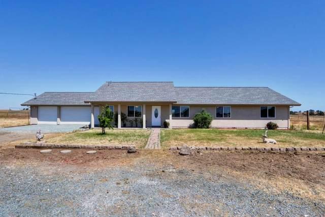 1515 Duck Creek Road, Ione, CA 95640 (MLS #221046826) :: Live Play Real Estate | Sacramento
