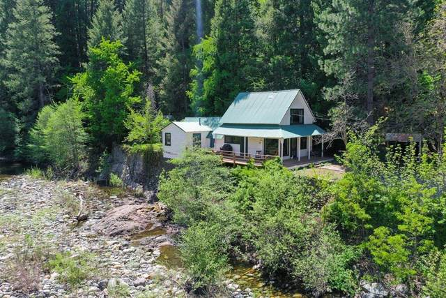 15 Front Street, Downieville, CA 95936 (MLS #221048075) :: Keller Williams Realty