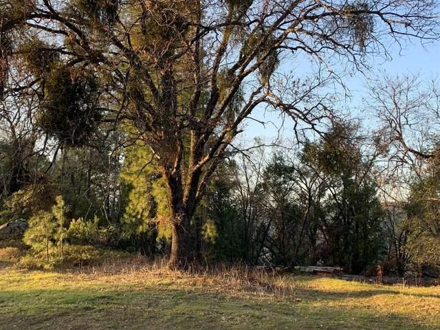 6785 Slug Gulch Road, Somerset, CA 95684 (MLS #221048118) :: Keller Williams - The Rachel Adams Lee Group