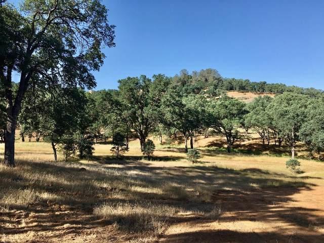 4252 Paolini, Valley Springs, CA 95252 (MLS #221048503) :: Heidi Phong Real Estate Team