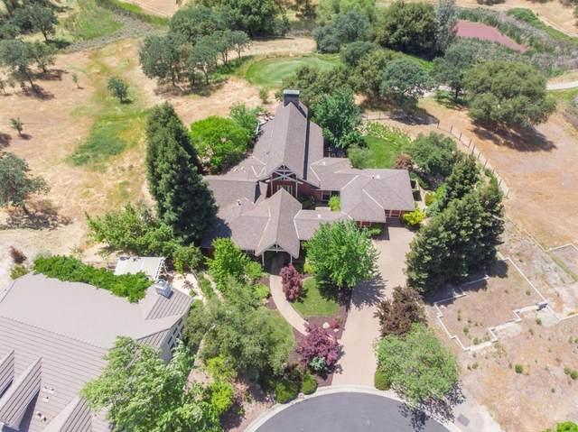 17 White Oak Court, Copperopolis, CA 95228 (MLS #221048942) :: CARLILE Realty & Lending
