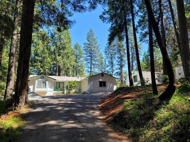 3012 Small Claims Place, Georgetown, CA 95634 (MLS #221049194) :: CARLILE Realty & Lending