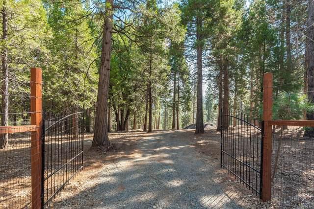 19900 E Pine Drive, Pioneer, CA 95666 (#221050103) :: Rapisarda Real Estate