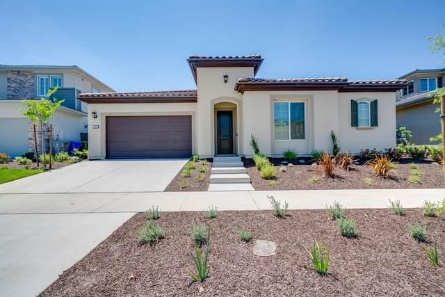 14975 Amber Grove Drive, Folsom, CA 95630 (MLS #221050129) :: REMAX Executive