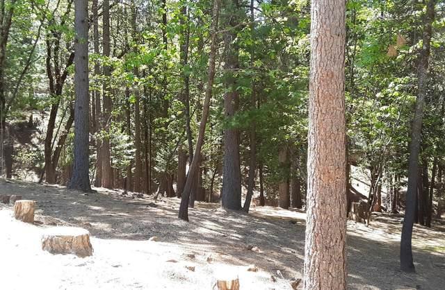 5701 Lupin Lane, Pollock Pines, CA 95726 (MLS #221050156) :: REMAX Executive