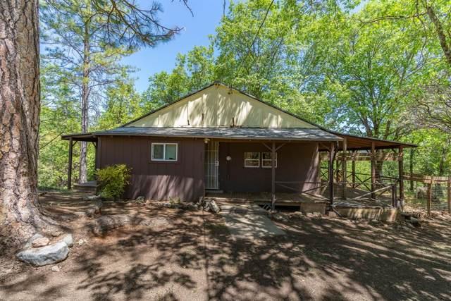 282 Ridge Road, Rail Road Flat, CA 95248 (MLS #221050772) :: CARLILE Realty & Lending
