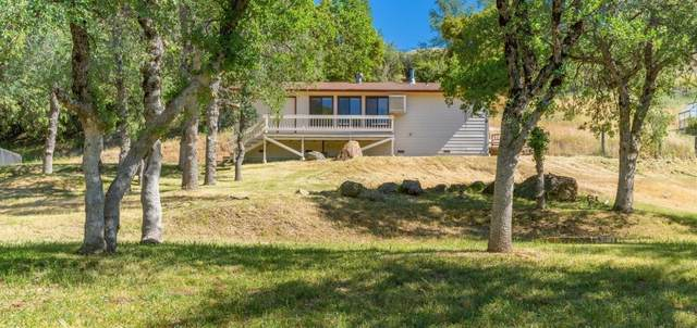 2961 Bald Mountain Rd, West Point, CA 95255 (MLS #221051162) :: CARLILE Realty & Lending